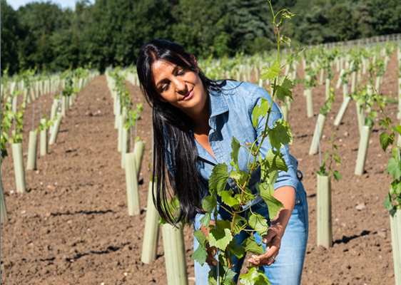 America Brewer tends the vines at Oastbrook Vineyard in Sussex
