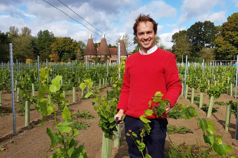 Will from Cycle the Vineyards examines the Oastbrook Vines