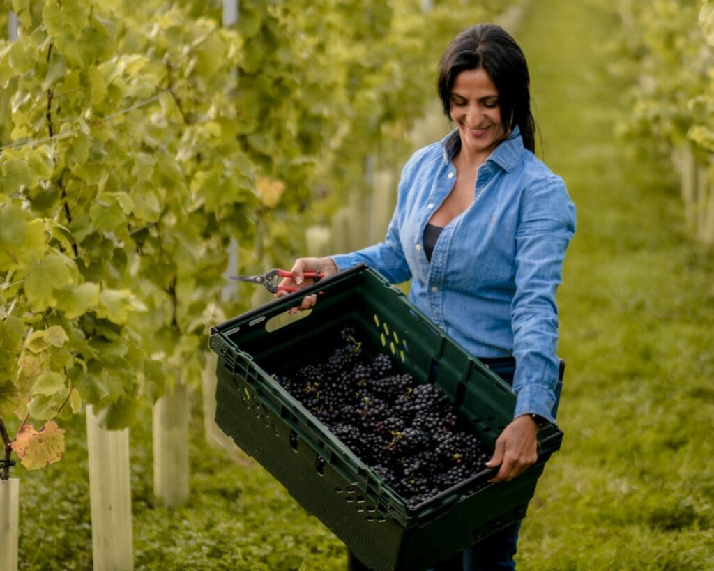 America Brewer with her grapes at Oastbrook Estate